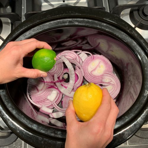 pulled pork squeeze half lemon half lime over onions