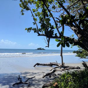 daintree-beach-square