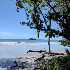 daintree-beach-square