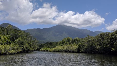 The Beauty of Australia: Cairns