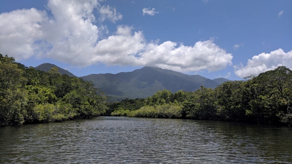 daintree-croc-tour-widescreen