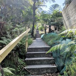 manly-to-spit-walk-stairs
