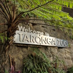 taronga-zoo-sign