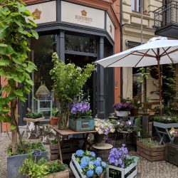berlin has the cutest flower shops