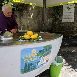 lemon sorbet slush guy