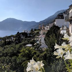 view from hotel il pino