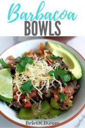 barbacoa bowls 2