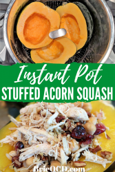 chicken cranberry stuffed acorn squash